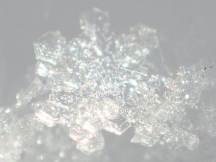 P1230091雪の結晶 (440x330).jpg