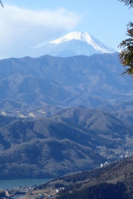 P1269684富士山と相模湖1014 (440x660).jpg
