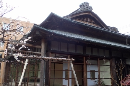 P3010011高尾駒木野庭園 (440x293).jpg
