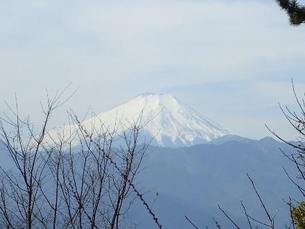 P3021305富士山 (440x330).jpg