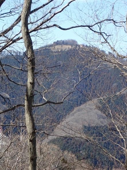 P3021323高尾山頂 (443x590).jpg