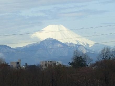 P3231655富士山 (440x330).jpg
