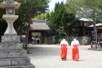 P4270390伊弉諾神社・巫女 (210x140).jpg