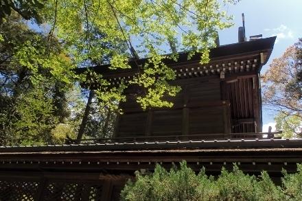 P4270395伊弉諾神社 (440x293).jpg