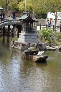 P4270416伊弉諾神社 (207x310).jpg