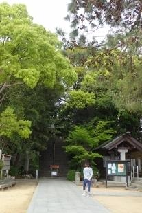 P4270427自凝島神社 (207x310).jpg