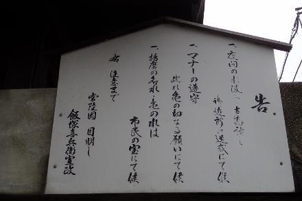 P4300622亀の水 (440x293).jpg