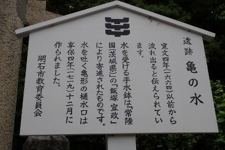 P4300624亀の水 (440x293).jpg