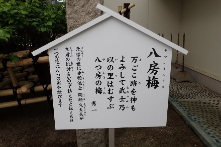 P4300661柿本神社 八房梅 (440x293).jpg