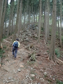 P5021477岩茸山 登り (210x280).jpg