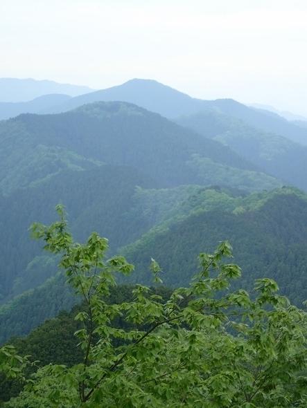 P5021486岩茸山からの眺望 (443x590).jpg
