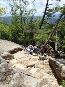 P6252073岩場を攀じ登る (210x280).jpg