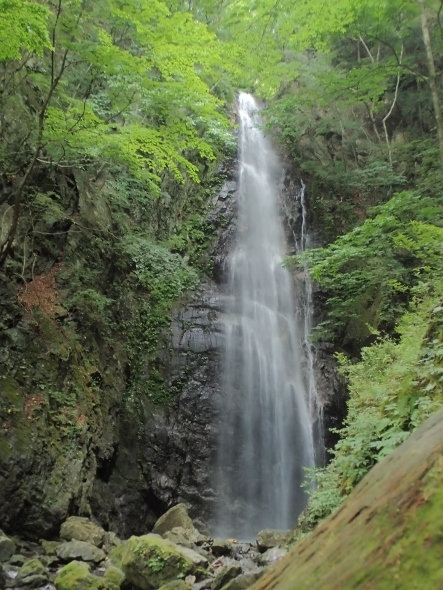 P6283554百尋の滝 (443x590).jpg