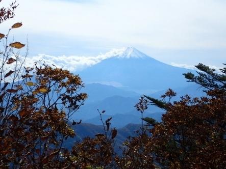 PA317820富士山 (443x332).jpg