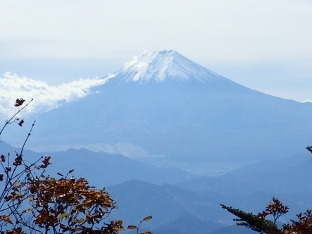 PA317829富士山 (443x332).jpg